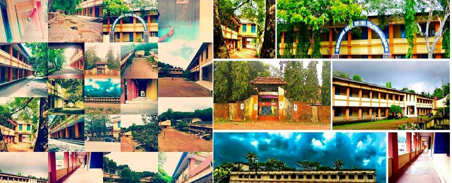 DEVASWOM BOARD COLLEGE, Thalayolaparambu -  Affiliated to Mahathma Gandhi University Kottyam